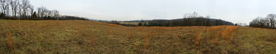 Perry County Land.jpg
